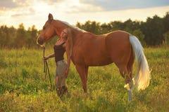 Kvinna och guld- häst Royaltyfria Bilder