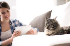Kvinna och katt i vardagsrummet Arkivbilder