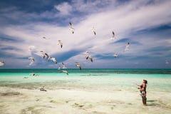 Kvinna och liten flicka som tycker om deras fritid på stranden, matande flygseagulls Arkivfoton