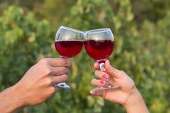 Kvinna och man i vingård som dricker den röda vinrankan i solskenclinen Royaltyfri Foto