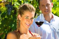 Kvinna och man som sitter under vinranka och att dricka Royaltyfri Foto