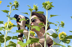 Kvinna och solrosen Fotografering för Bildbyråer