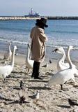 Kvinna och svanar på stranden arkivbild