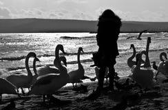 Kvinna och svanar på stranden royaltyfria bilder