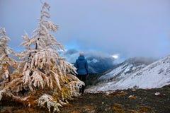Kvinna på bästa seende scenisk sikt för berg av norr kaskader i tidig vinter Stillahavs- trail för vapen royaltyfri bild