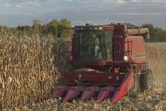 Kvinna på traktoren Arkivbild