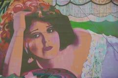 Kvinna på väggen Arkivfoton