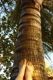 Kvinna pedicured fot på palmträdet arkivbilder
