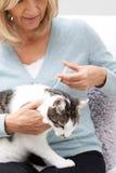 Kvinna som applicerar den Tick And Flea Treatment To husdjurkatten Royaltyfri Bild