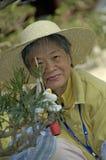 Kvinna som arbeta i trädgården på den ChiLin kloster i staden Hong Kong Arkivfoton