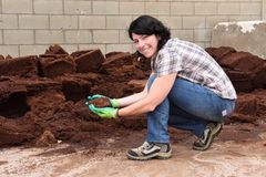 Kvinna som arbetar i den trädgårds- mitten som composting, royaltyfria foton