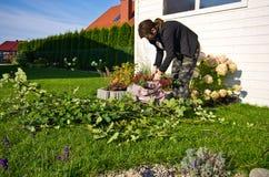 Kvinna som arbetar i en trädgård, bitande överskott ris av växter royaltyfria foton