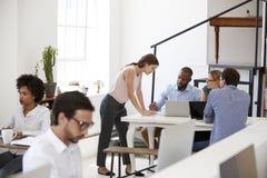 Kvinna som arbetar med kollegor på ett skrivbord i öppet plankontor arkivbild
