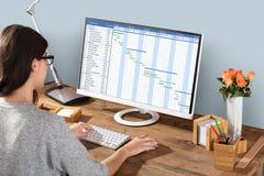 Kvinna som arbetar på det Gantt diagrammet genom att använda datoren arkivbilder