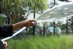 Kvinna som bevattnar trädgården med vatten för trädgårds- slang royaltyfri foto