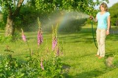 Kvinna som bevattnar trädgårdblommor Royaltyfria Bilder