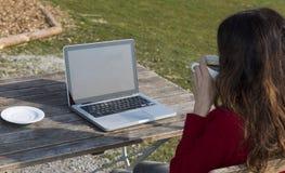 Kvinna som dricker kaffe och surfar på internet på en restaurang arkivfoton