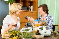Kvinna som förklarar till hennes granne om teet Royaltyfri Foto