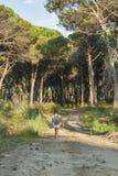 Kvinna som fotvandrar i den Tuscany skogen Arkivbilder