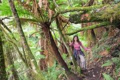 Kvinna som fotvandrar i rainforesten Royaltyfri Bild