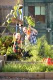 Kvinna som fungerar på odlingslott med barnet Royaltyfria Bilder