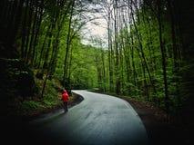 Kvinna som går banan till och med skogen royaltyfri foto