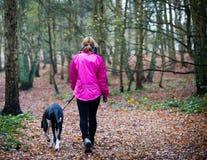 Kvinna som går en hund Royaltyfria Foton
