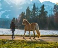 Kvinna som går hästen arkivfoto
