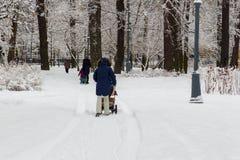Kvinna som går i parkera med en behandla som ett barnsittvagn arkivfoton
