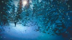 Kvinna som går i snöig blå skog arkivfoto