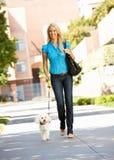 Kvinna som går med hunden i stadsgata Arkivfoton