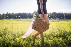 Kvinna som går på ett fält som samlar örter till korgen Royaltyfri Foto
