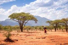 Kvinna som går till och med savann, Kenya Arkivfoton