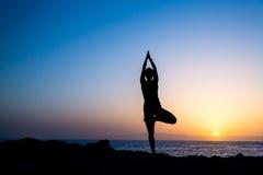 Kvinna som gör konturn för yogaträdsolnedgång Royaltyfri Bild
