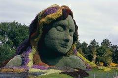 Kvinna som göras av växter Arkivbild