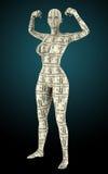 Kvinna som göras från pengar Arkivbilder