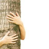 Kvinna som kramar ett träd Arkivbild