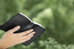 Kvinna som läser bibeln Arkivbild