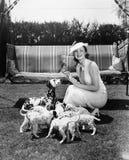 Kvinna som matar hennes hund, och valpar (alla visade personer inte är längre uppehälle, och inget gods finns Leverantörgarantier Arkivfoton