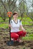 Kvinna som planterar trädet i fruktträdgård Arkivfoton
