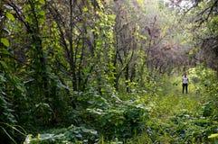 Kvinna som är borttappad i skog Fotografering för Bildbyråer