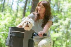 Kvinna som rider en cykel med hennes hund Arkivfoto