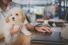Kvinna som rymmer den förtjusande hunden på kaférestaurangen kvinnlig tonåring s arkivbilder