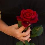 Kvinna som rymmer den röda rosen royaltyfri bild