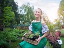 Kvinna som rymmer en ask med växter i hennes händer i trädgårds- mitt Arkivfoton