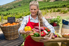 Kvinna som rymmer en korg av nya grönsaker på stallen arkivfoto