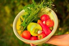 Kvinna som rymmer en korg fylld med grönsaker arkivfoton
