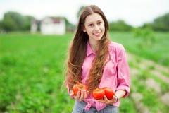 Kvinna som rymmer nya tomater Arkivfoton