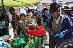 Kvinna som säljer cocasidor i en gatamarknad i lilla staden av Betanzos, i Bolivia arkivfoto