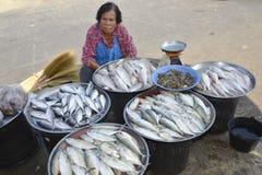 Kvinna som säljer den nya fisken på takuaPA-marknaden Thailand Arkivbild
